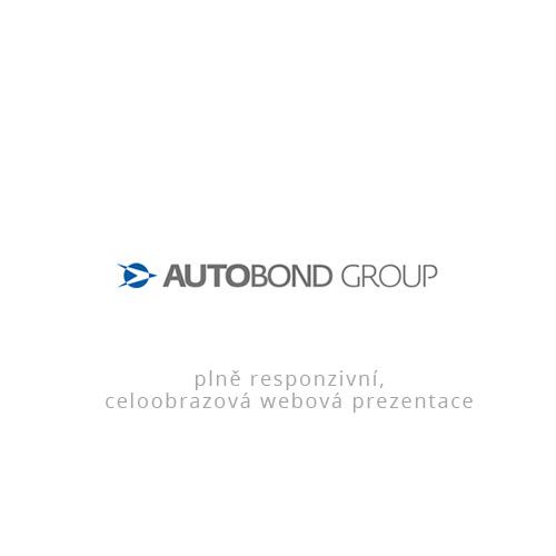 Tvorba webu pro Autobond Group
